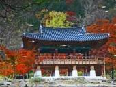Seoul mở lớp học tiếng Hàn