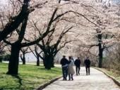 Học bổng du học Nhật Bản năm 2012