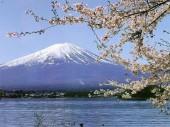 Du học vừa học vừa làm tại Nhật Bản – Hàn Quốc