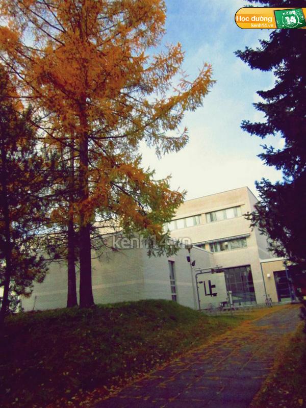 Đất nước Phần Lan trong mắt du học sinh Việt