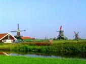 Du học Hà Lan với bằng IELTS 6.0 được không?