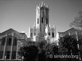 Đại học Auckland