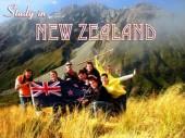 Khả năng tìm việc tại NewZealand