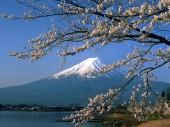 10 bước làm hồ sơ du học Nhật Bản 2013