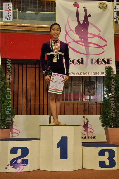 Cô gái Việt ghi danh đất nước trên đấu trường quốc tế