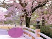 Học bổng toàn phần du học Nhật