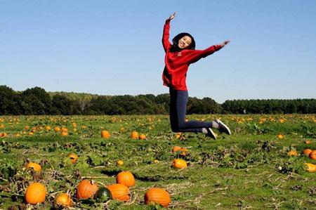 Đi chọn bí ngô cho lễ hội Halloween