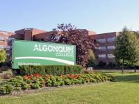 front-view-ALGONQUIN