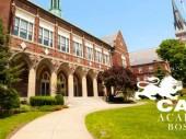 Học bổng lên đến 100% trường Cats Academy Boston, Mỹ