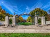 Học bổng du học Mỹ 100% học phí từ Elmhurst College