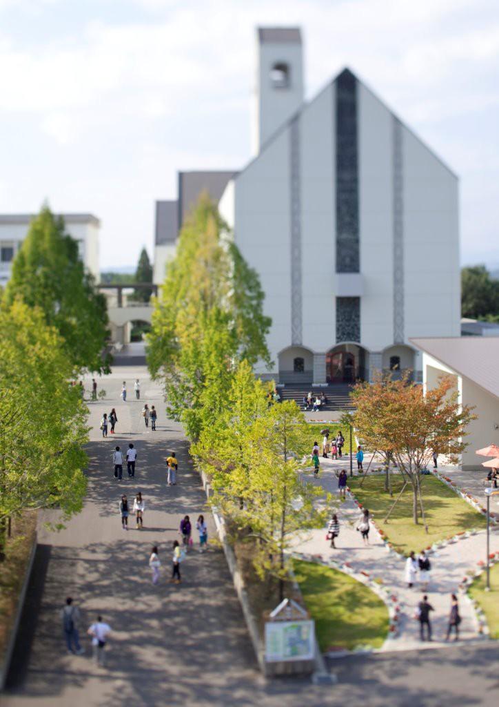 Một góc đại học 2